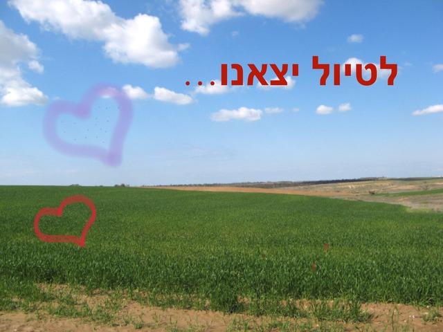 מטיילים בארץ ישראל by חגית
