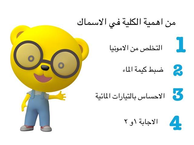 الاسماك  by Shaimaa Mohammed