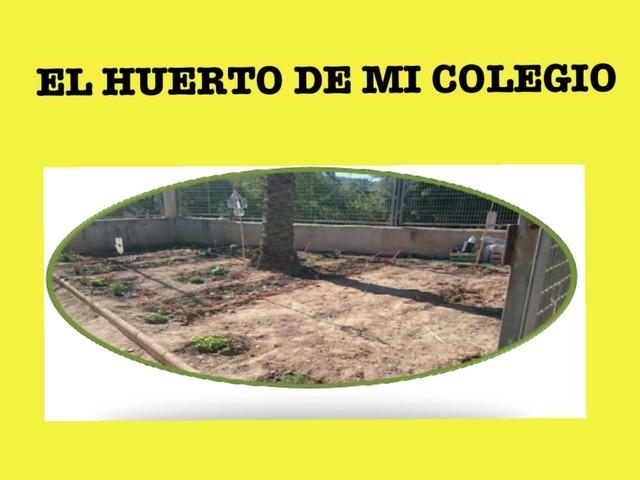 El Huerto De Mi Colegio by pilitoninas primitivas