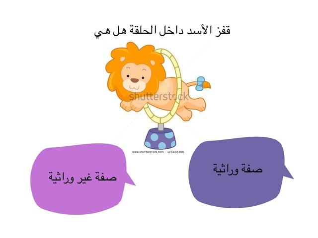 لعبة عن الصفات الموروثة by hanan alhashemi