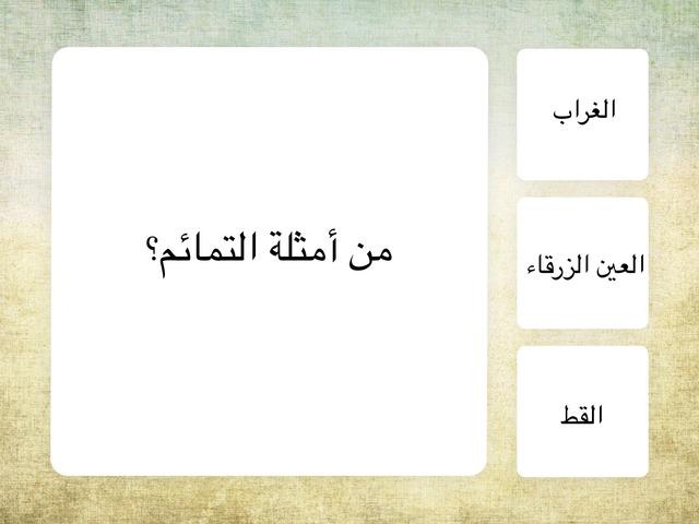 التمائم و التطير و الفأل by نورة الخالدي
