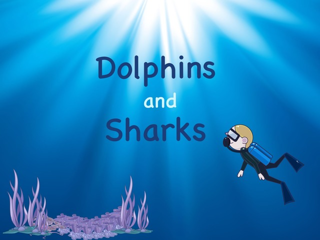 Sharks And Dolphins by Kate Kelly