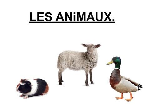 Les Animaux Désignation 5. by Valerie Escalpade