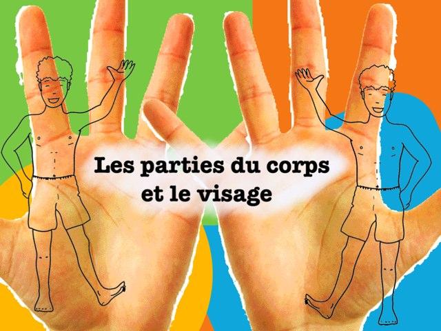 Les Parties Du Corps by Ecole0179 Auber179