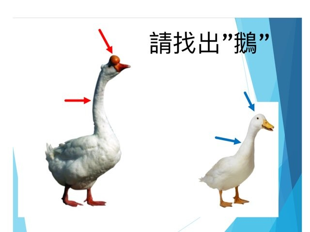 初小二常識 by Li Kayan