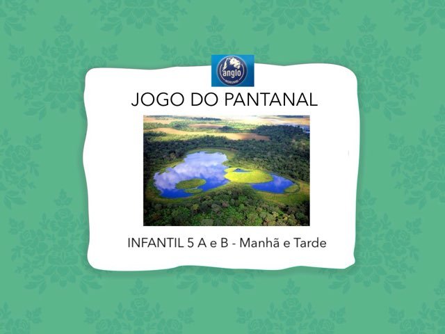 Jogo Do Pantanal by Natalia Paluan