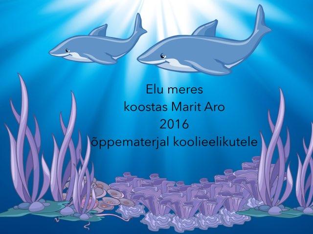 Elu meres  by Marit Aro