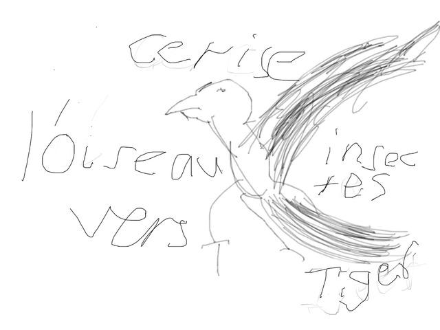 L'oiseau  by Classe Ecolint
