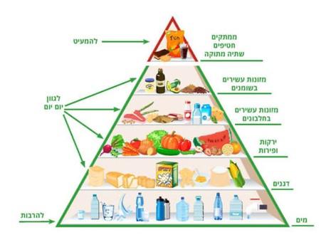 פירמידת המזון by Shelly Gofman