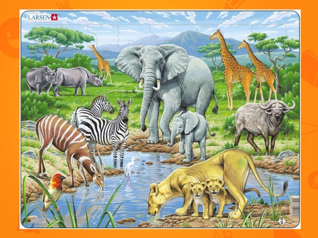 Игра Африканские Животные на водопое by Alex