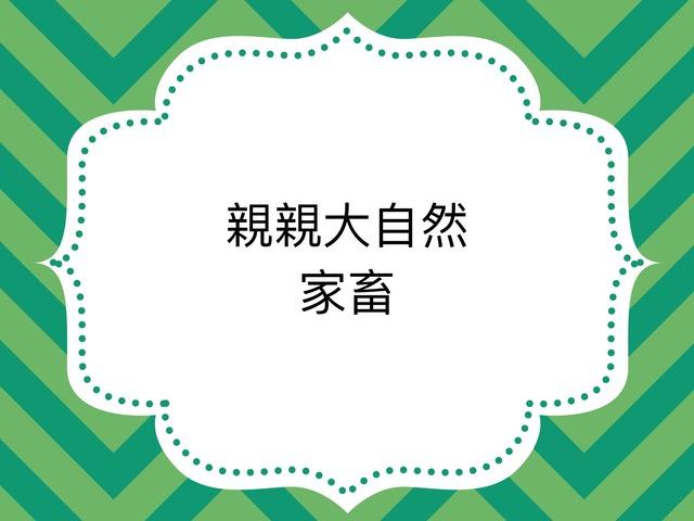 家畜 by WONG