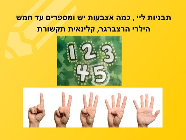 מספרים 1-5 , התאמה בין הכמות והמספר by Hilary Herzberger