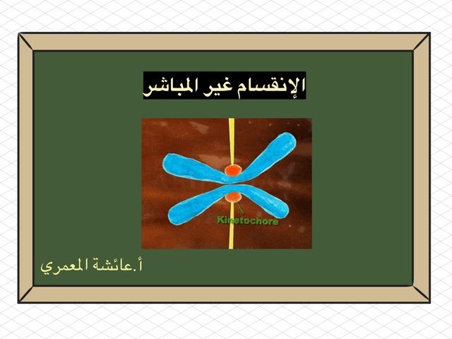 الإنقسام غير المباشر by aisha90 91
