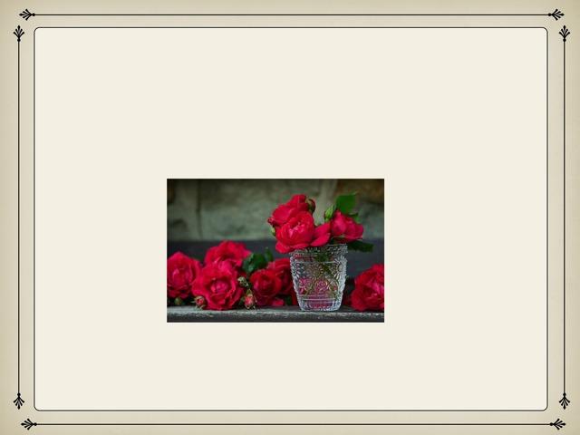 الورد by Neeso .A.H
