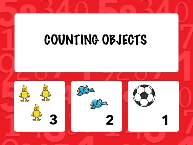 Counting Objects by Hadi  Oyna