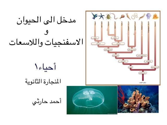 مدخل الى الحيوان by احمد كريري