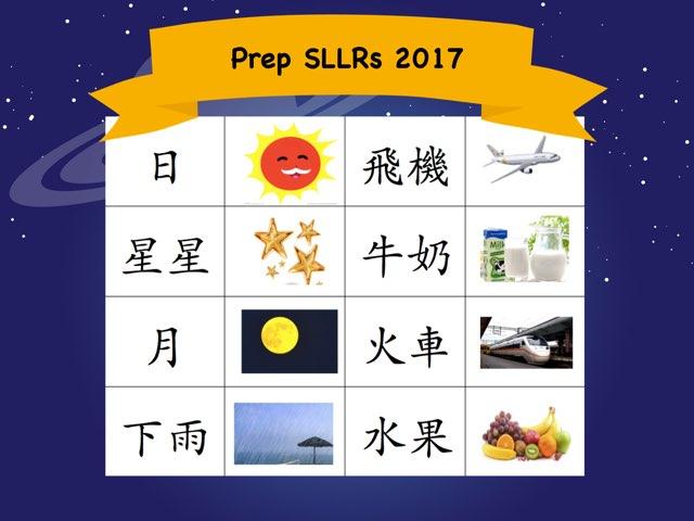 Prep SLLRs 2017 by Tulip Li