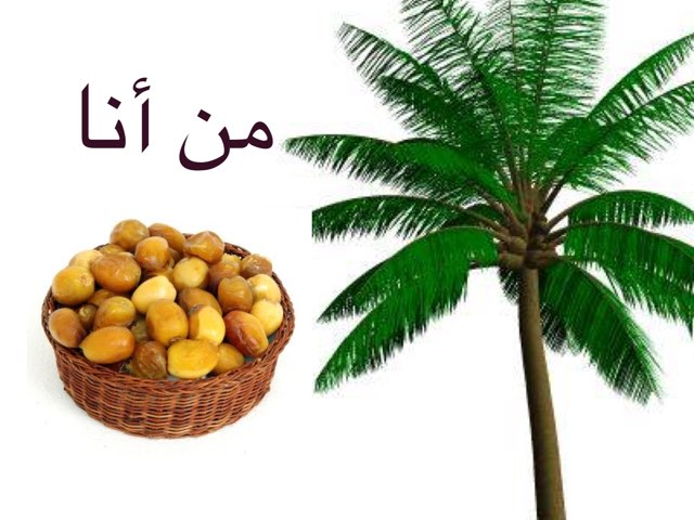 لعبة 42 by Wafa Alghamdi
