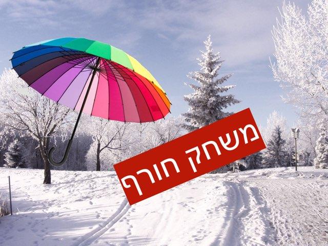 משחק החורף by טל מיכלוביץ