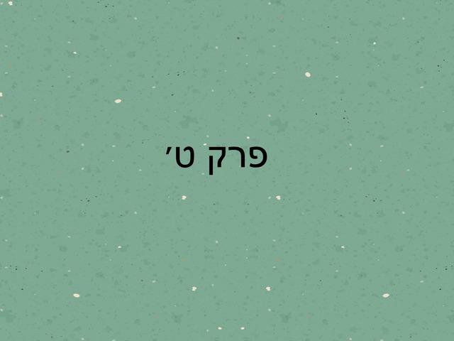 במדבר פרק ט by מכללה תלפיות