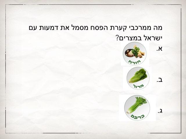 קערת פסח- חצב by yalin derhy