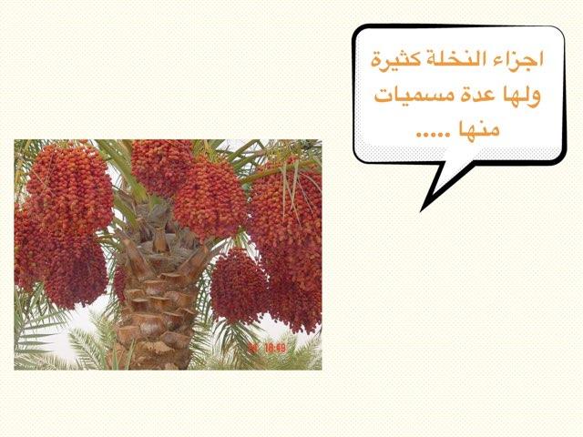 لعبة رقم ٢ by Wafa Alghamdi