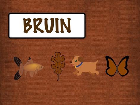 Kleuren: Bruin by Carol Smith