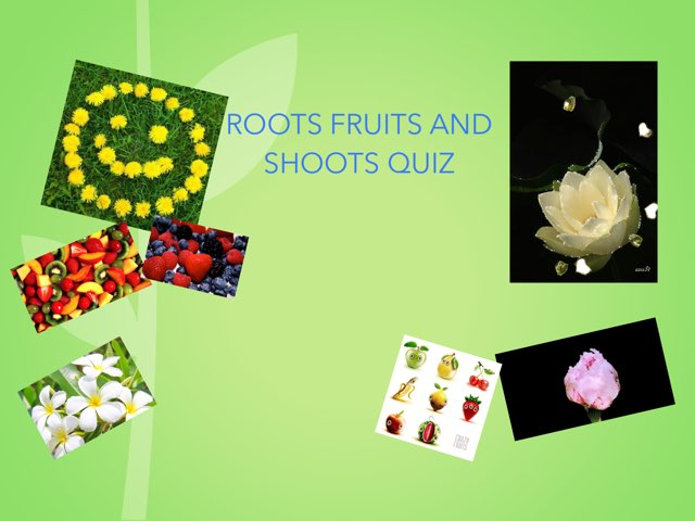 Roots Fruits And Shoots by Y5 RA