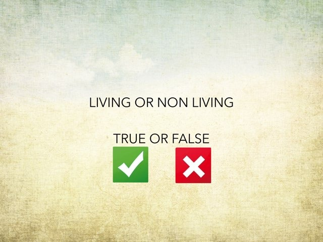 Living Or Non Living True Or False by Tatiana Pricevicius