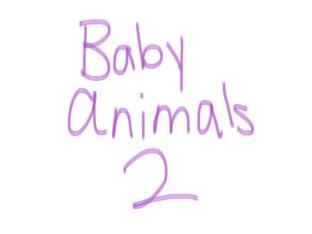 Baby Animals 2 by Jade Wilkinson