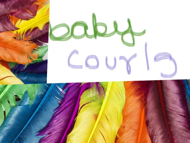 Baby Colours by Lisa Iyer