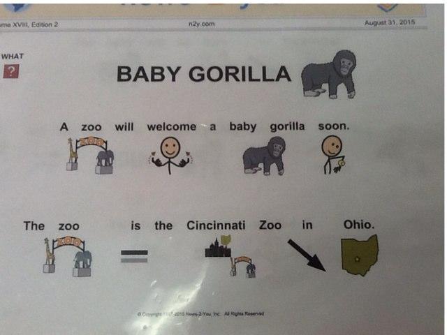 Baby Gorilla by Julie Gittoes-Henry