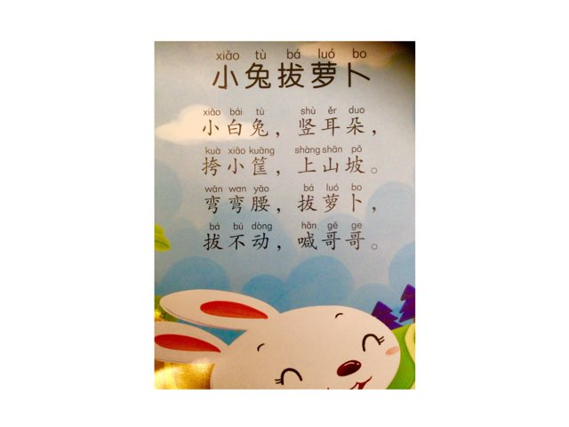Basic Chinese:  Little rabbit Pulling Carrots by Shaoyi Li