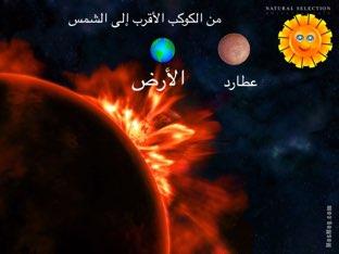 Basma by Basma  Ibrahim