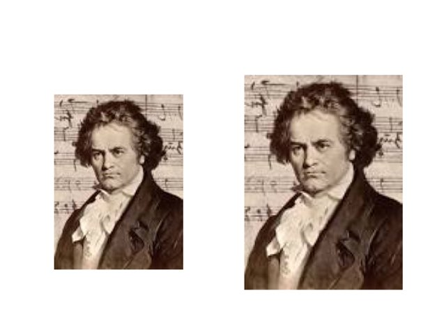 Beethoven by Isabelle Guay