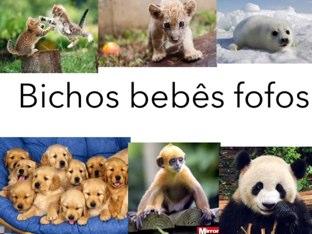 Bichos Fofos by Beatriz Rossini