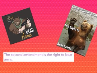 Bill Of Rights by Mikayla Wilson