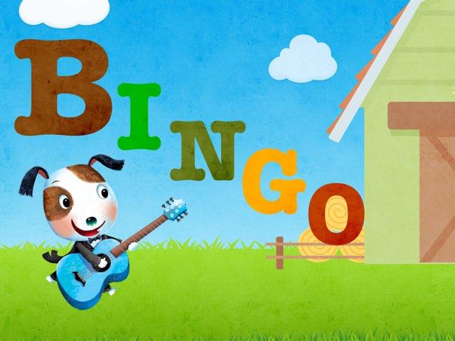 Bingoo by T_abrar Ed