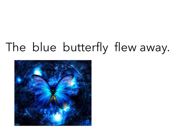 Blue Butterfly by Khoua Vang