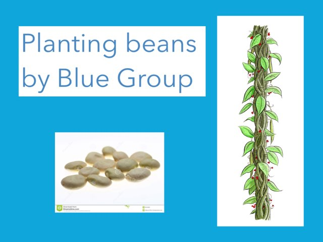 Blue Group by Emma Kennedy