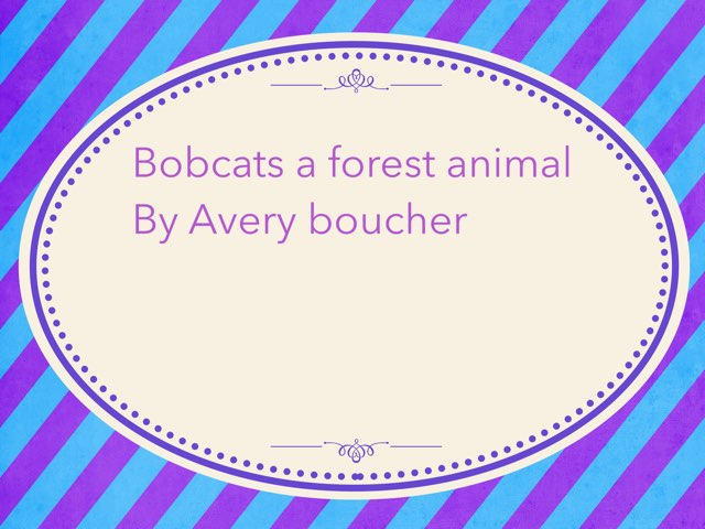Bobcats  by Amy Clay