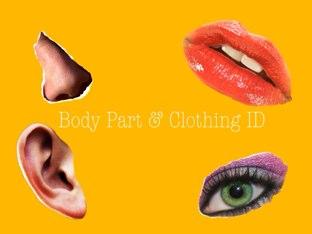 Body Part & Clothing ID by Katie Davis