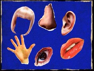 Body Parts by Caroline Frenchman
