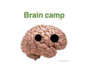 Brain Camp  by Essaean  Lyon