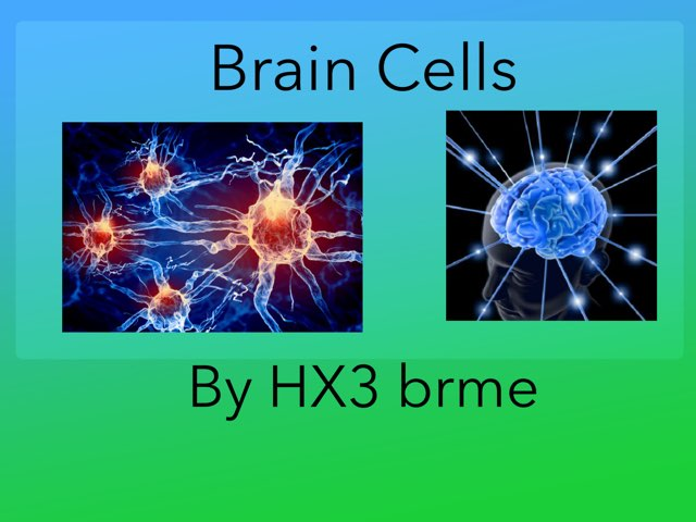 Brain Cells  by hx3 brme