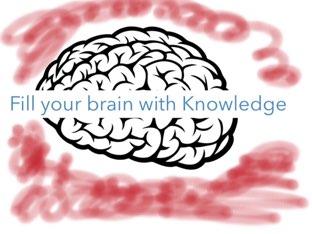 Brain Game by Kitana Turner