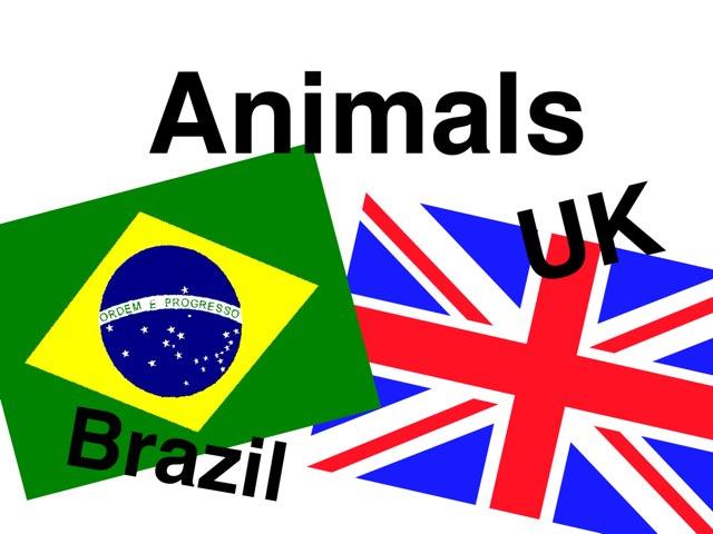 Brazilian Animals  by Laura Scrubbing
