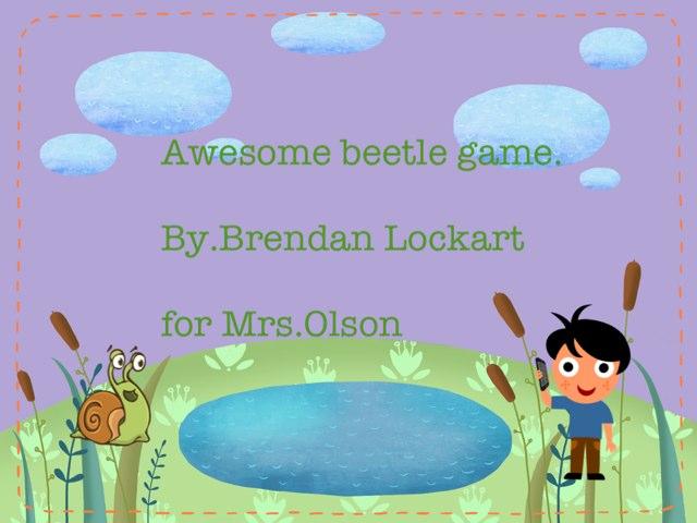 Brendan's Beetle Project by Stephanie Olson