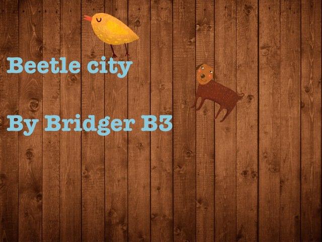 Bridger's Beetle Project by Vv Henneberg