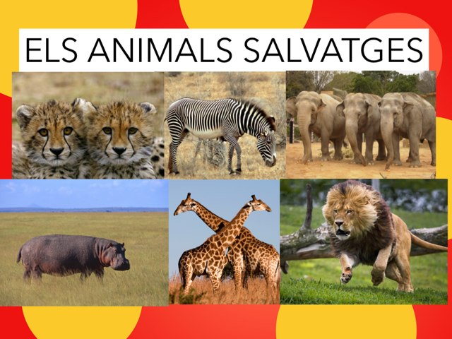 Busca ELS ANIMALS SALVATGES  by Inma Luque